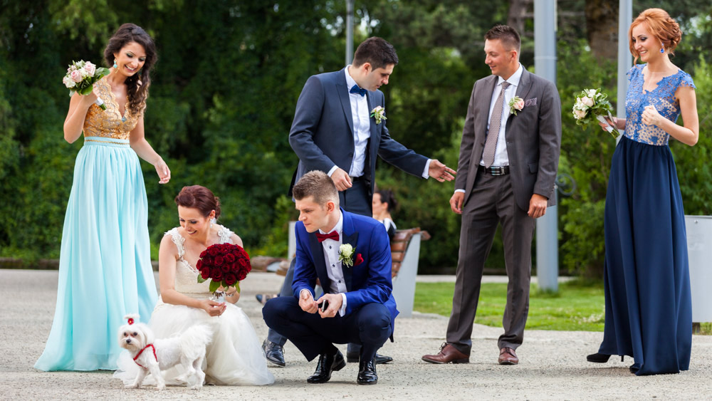 Fotografie de nunta Cluj